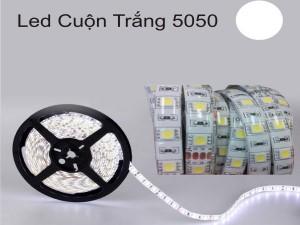 LED-DÂY-5050-CUỘN-5M-keo