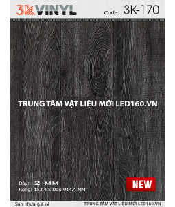 san-nhua-3k-vinyl-3K-170-new-255x300