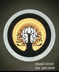 C6569