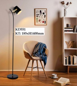 VG-KD551_z