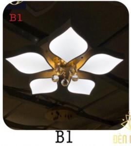 HCT-B1